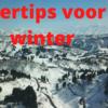 Vijvertips voor de winter